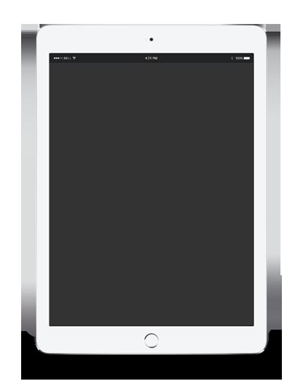 Website Display ipad example
